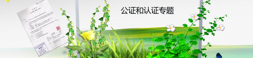 郑州外资公司注册公证和认证专题